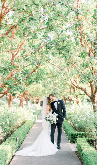 california and destination and elopement photographer