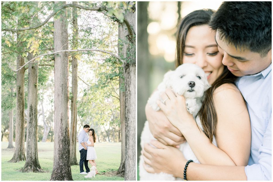 woodsy california engagement photographer