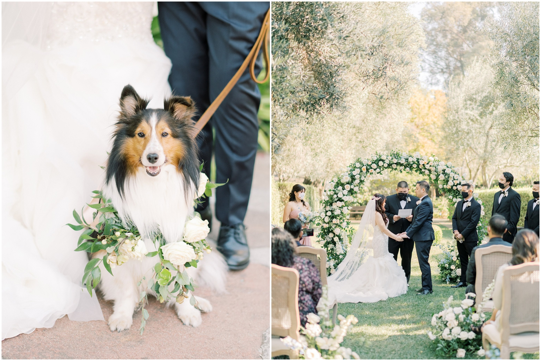 allied arts guild wedding with cute dog